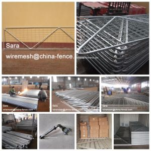 1.17 High X 3.66m Long Hot Dipped Galvanized N Brace Temporary Farm Gate (XMS18) pictures & photos