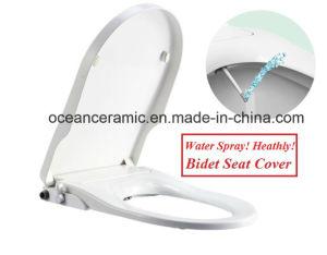 Ts-1003 Square Toilet Seat, Non-electronic Bidet Seat Cover for European U-Shape Toilet pictures & photos