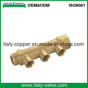 Certified Brass Forged Two Way Manifold (AV9061) pictures & photos