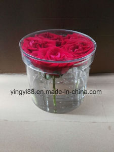 Clear/White/Black Acrylic Rose Box Acrylic Round Flower Box pictures & photos