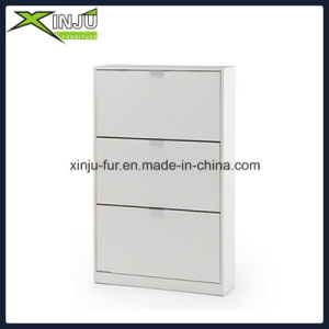 Home Living Furniture 2 Drawer Shoe Cabinet pictures & photos