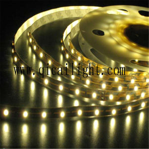 High Brightness Green Light Source 0.2W 2835 SMD LED Flexible LED Strip pictures & photos