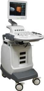 4D Color Doppler System (ultrasound, ultrasoni, color doppler, scanner, 4D) pictures & photos