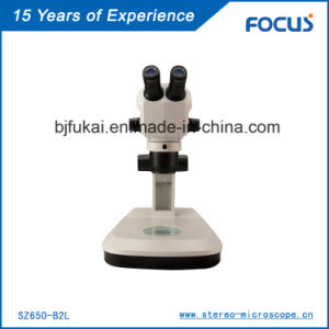 Two Head Stereo Microscope for Dependable Performance pictures & photos
