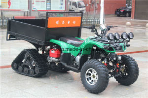 Electric ATV Big Storage with Snow Tire China Supply pictures & photos