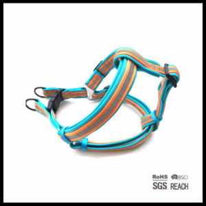 Personalised 3m Reflective Outdoor Soft Comfy Padded Sports Pet Dog Harness pictures & photos