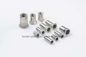 Rivet Nut pictures & photos