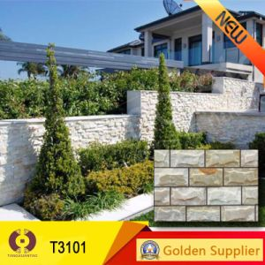 Hot Design Cultural Stone Tile Wall Tile Nature Stone (T3101) pictures & photos