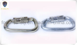 D Shaped Screw Lock Carabiner pictures & photos