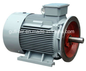 Oil Less Single Screw Air Compressor pictures & photos