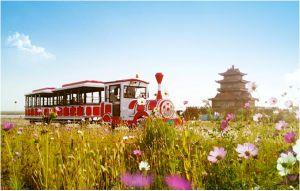 Diesel Power Amusement Park Trackless Train pictures & photos