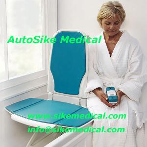 Bath Tub Lift Bath Lift Chair