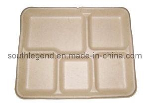 Paper Tray (SL-D-4019)
