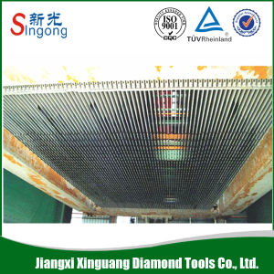 Diamond Gangsaw Segments for Marble pictures & photos