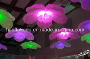Indoor and Outdoor Events Idear and Celebrations Inflatable Flower