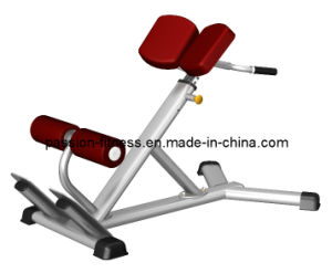 Multy Hyper Extension Bench Free Weight Commercial Fitness/Gym Equipment with SGS