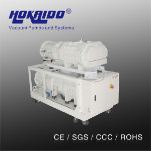 Hokaido Spiral Dry Screw Vacuum Pump (RDE300)