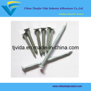 """Galvanized Concrete Nails Grooved Shank Flat Head (1/2""""-4"""") pictures & photos"""