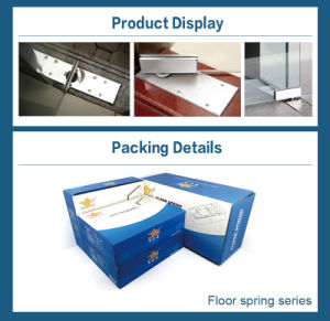 High Quality Floor Hinge for Office Glass Door (FS-105) pictures & photos