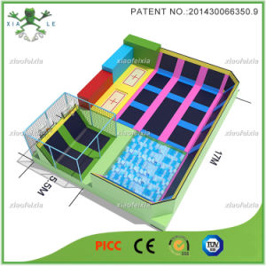 China Large Indoor Trampoline Manufacturer (14-2110A) pictures & photos