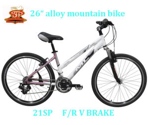 Woman Model Mountain Bike (FP-MTB-A029) pictures & photos