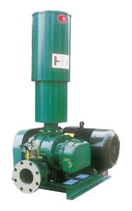 Roots Blower (Bare Shaft Blower) pictures & photos