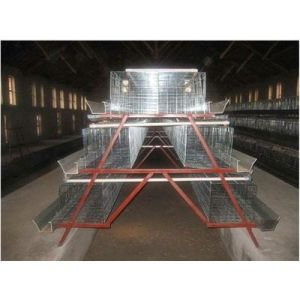 Layer Chicken Cage, Hen Coop Layer Cages, Birds Cages, Poultry Farm Mesh pictures & photos