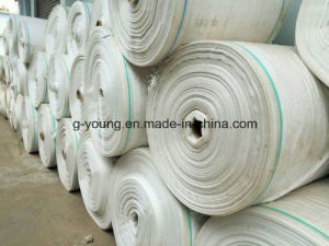 Hot Sell Promotion Price PP Woven Fabric pictures & photos