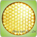 300mm Cobweb Lens LED Traffic Light Module (DXJD300-5-5-4B)