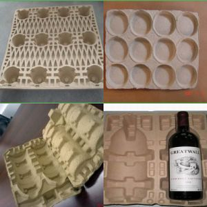 Egg Fruit and Vegetable Carton and Tray