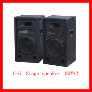 Professional Stage Speaker (G6)