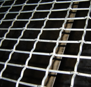 Crimped Wire Mesh (CWM006) pictures & photos