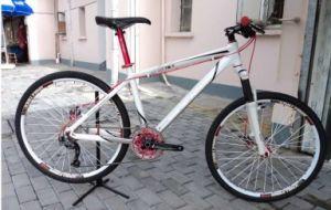 Fashionable Mountain Bike
