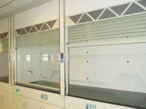 Guangzhou Factory Biology Laboratory Fume Hood