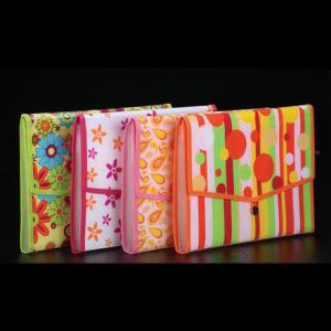 7 Inner Bags Expanding File in Full Color Printing (C01935)