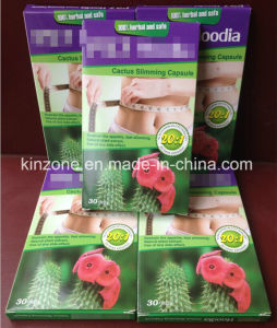 Hoodia Cactus Slimming Softgel Herbal Weight Loss Capsules pictures & photos
