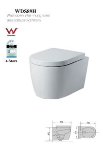 Morden Bathroom Washdown Wall-Hung Toilet Water Saving Toilet Bowl (WDS89H)