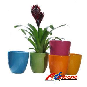 Flower Pot (SC-1008)