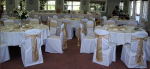 Chair Cover With Champine Sash