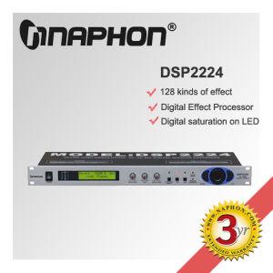 Processor (DSP2224)