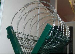 Best Buy PVC Powder Razor Barbed Wire pictures & photos