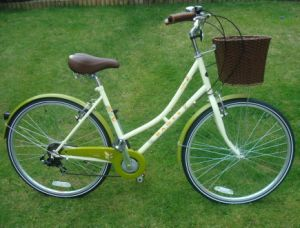 High Grade Rear 6speed Bike Bicycle (FP-LDB-006) pictures & photos
