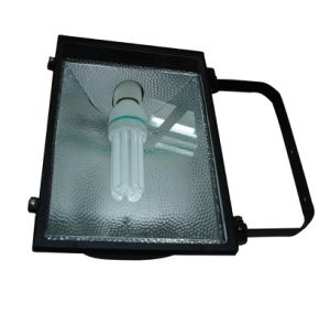 Flood Light (RH207-E)