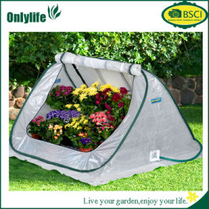 Onlylife Portable Mini Outdoor Foldable Greenhouse for Vegetable Growing pictures & photos