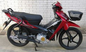 Motorcycle/Cub Motorcycle (SP125-47)