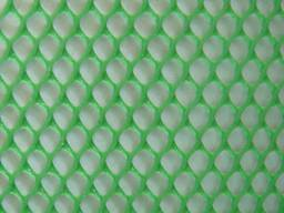 Plastic Plat Mesh for Agriculature Breeding pictures & photos