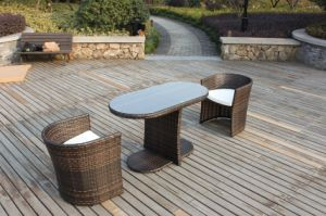 PE Rattan Furnitures (MD-022)