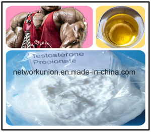 Injectable Anabolic Steroids Liquid for Muscle Growth 100mg/Ml 200mg/Ml Test Prop CAS 57-85-2 Testosterone Propionate pictures & photos