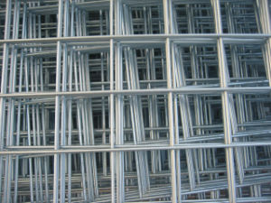 Stainless Steel 304 Welded Mesh (R-BXGDHWP) pictures & photos