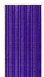 250-300W Solar Panel (Poly)